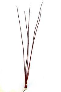 Afbeelding van Cornus rood- 80cm bos a 5 tak