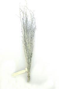 Afbeelding van Berkentakken zilver/glitter (per bos ) a 10 tak