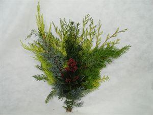 Afbeelding van Mix Boeket nr. 2: - 5 soorten (15-11-2021 tm 15-12-21)